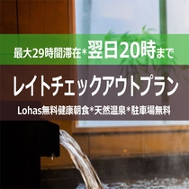 スーパーホテル千葉・市原【レイトチェックアウトプラン】20時