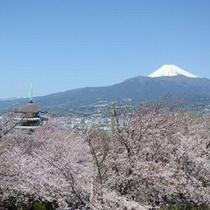 香貫山からの眺望