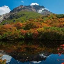 姥ケ平の紅葉(ひょうたん池)