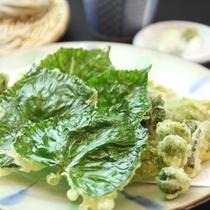 ☆料理_夕食_山葵葉の天ぷら
