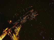 満天の星2