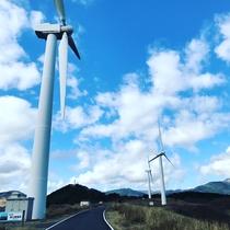 東伊豆風力発電所 車で30分 ホワイトタイガーのアニマルキングダム行かず、途中右に上がって行く絶景!