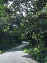 施設への道