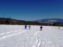 冬:スノーシュー