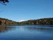 秋:白駒池
