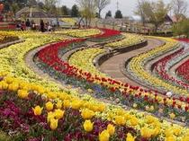 春:ハイジの村