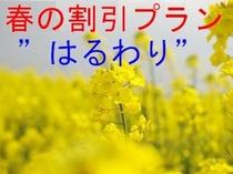 春の割引A
