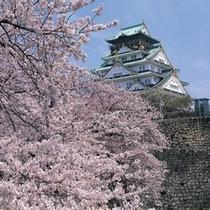 大阪城(春)