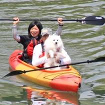 *【わんちゃんカヌー体験プラン】川面からの、いつもと違った景色をお楽しみください。