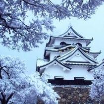 雪化粧した彦根城天守閣