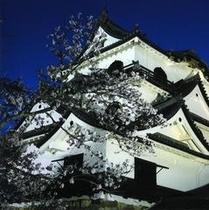 夜の彦根城天守閣