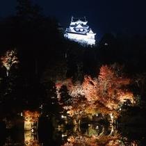 紅葉シーズンのライトアップと彦根城天守閣