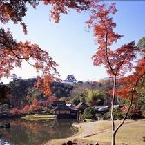 玄宮園からのぞむ秋の彦根城