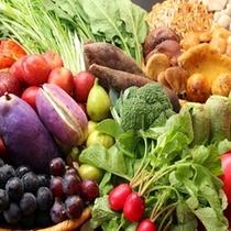 農家直売の獲れたての野菜
