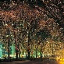 【観光スポット】SENDAI光のページェント 写真提供:宮城県観光課