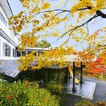 紅葉の晴観荘