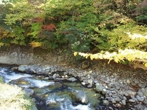 露天風呂「かじかの湯」から見る塩原渓谷