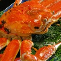 【香住蟹(イメージ)】この時期しか味わえない珍味をぜひご賞味下さいませ。