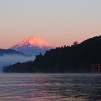【春季限定】湖畔にきらめく暖かな光と花香の春風を感じる旅 夕・朝食付