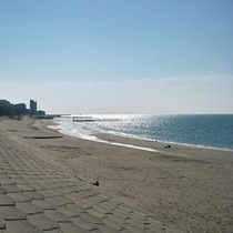 ◆小野浦海岸