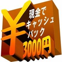 キャッシュバック3000円