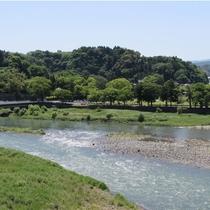 *宿からの眺め/自然いっぱいで、気持ちのよい景色が広がります。