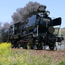 SL人吉:熊本~人吉間を走るJR九州の観光列車