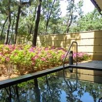 ツツジの季節は一層華やかな露天風呂。例年4月下旬頃が見頃です。