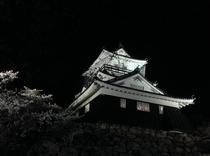 浜松城(ライトアップ)