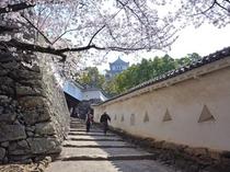 姫路城、将軍坂