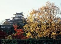 姫路城、秋