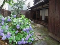 梅雨の時期の森鴎外旧居