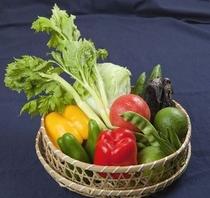 地産地消をモットーに、地元熊本の野菜や魚、また南阿蘇契約農家直送のお米も自慢です。