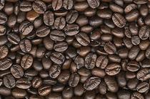 こだわりのコーヒー豆【高品質】