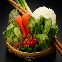 【地元農家の新鮮野菜】