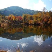■一ノ瀬園地 秋のまいめの池