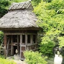 日本庭園_4