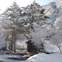 ◆周辺の雪景色