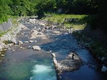 前を流れる渓流