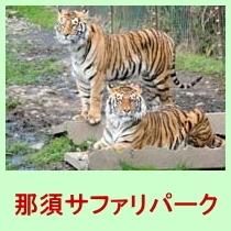 【那須サファリパーク】すぐ目の前まで寄ってくる草食動物にエサやりができる!