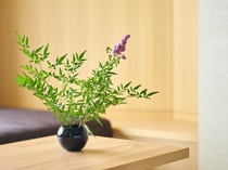 リニューアルルーム・季節の草花