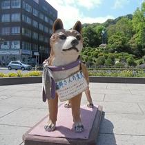人気スポット西郷隆盛像をバックに愛犬のツン 徒歩15分