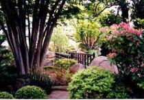 庭園散策路1