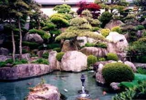 錦鯉の戯れる庭園