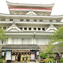熱海城から眺める熱海市全景は撮影スポットしても人気。春には桜が咲き誇ります。