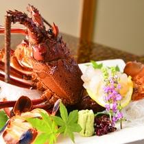 別注文用・伊勢海老造り。伊豆近海産400g前後に限って仕入。そのサイズ・味はまさに食材の王様です。