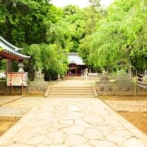 縁結びで人気のパワースポット伊豆山神社。頼朝と北条政子ゆかりの有名神社です。