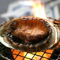 アワビの踊り焼きは今も昔も大人気食材。アワビ付プランや、量控え目プランで召し上がれます。