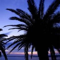熱海親水公園は、熱海サンビーチを右に少し進んだ場所にあります。