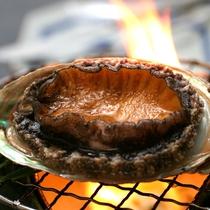 踊り焼き用のアワビは独自仕入ルートで北海道より。焼くととても柔らかいです。